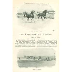 1898 Thoroughbred Horse Racing in New York