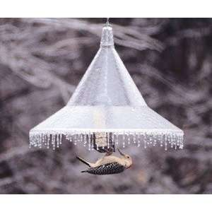 Pole Mounted Bird Feeder Squirrel Baffle Clear Pet