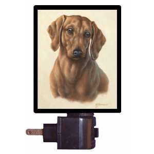 Dog Night Light   Dachshund Portrait   LED NIGHT LIGHT