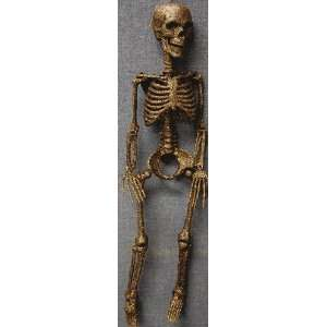 Hanging Skeleton With Glitter Halloween Prop Gold Toys & Games