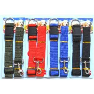 Matching Nylon Dog leash & Collar Set (Large Dog)