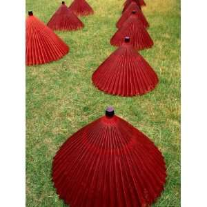 Rice Paper Umbrellas on Grass, Gifu, Japan Lonely Planet